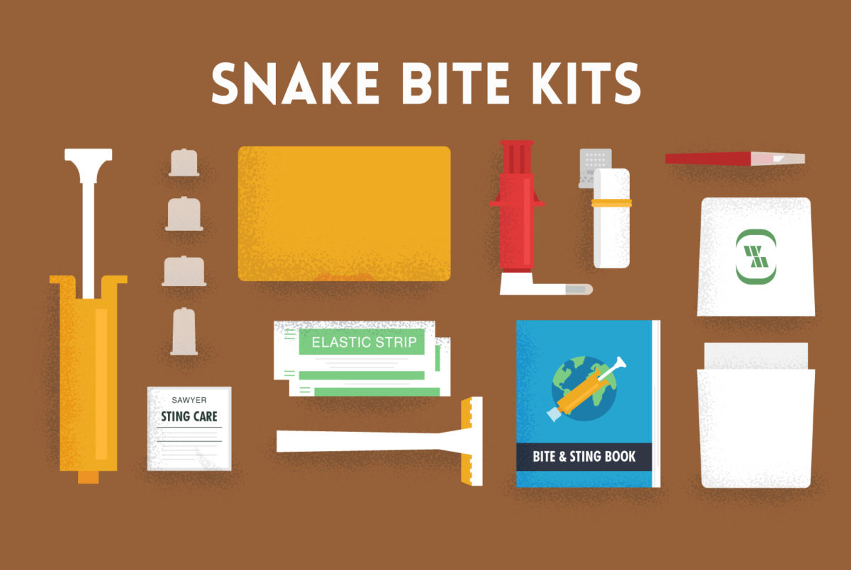 Should you get a snake bite kit? Here's what the experts have to say