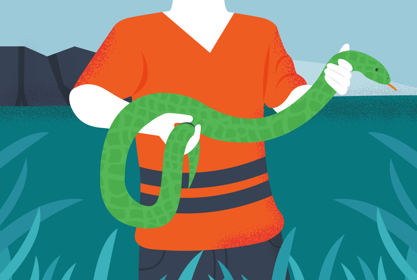Safe snake handling guide